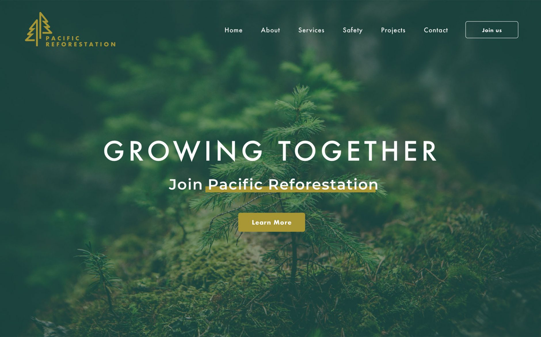 Pacific Reforestation
